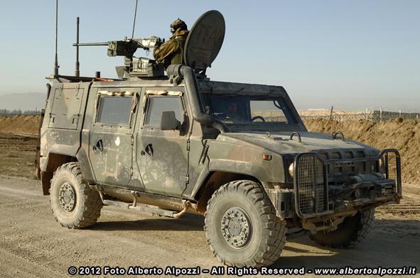 lince_shindand_afghanistan